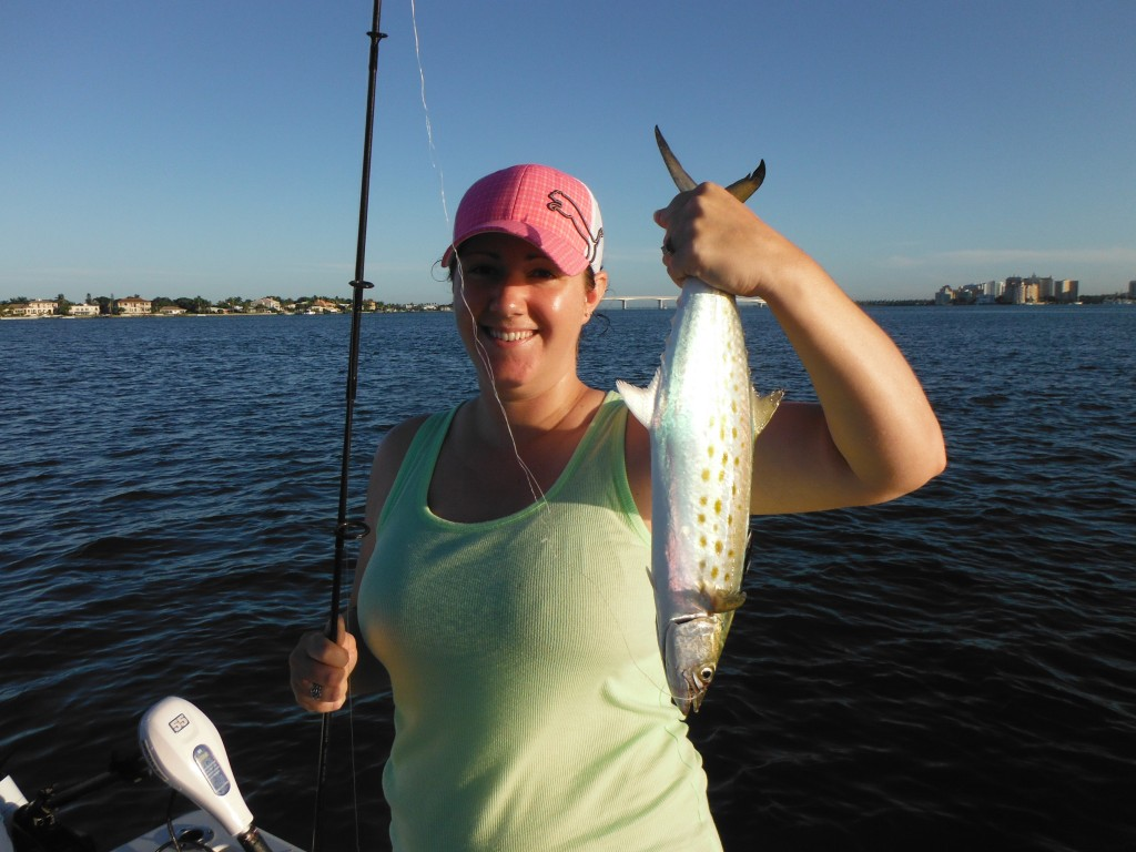 Sarasota fishing report fishing siesta key florida for Sarasota fishing charters