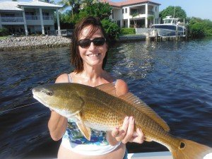 Sarasota fishing charter