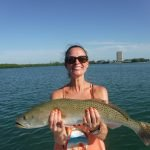 Great summer for speckled trout on Siesta key!