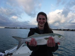 fishing Siesta Key