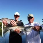 Good Siesta Key snook fishing
