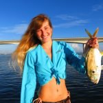 Excellent fishing continues in Sarasota with a lot of surface action!