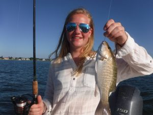 Fishing charters in Sarasota