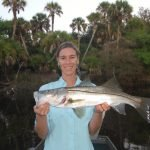 Sarasota fishing charters for snook in area rivers