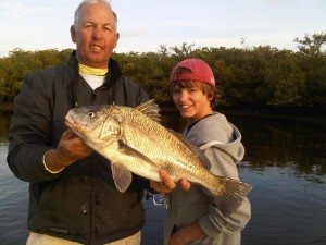 Siesta Key black drum fishing
