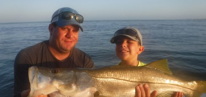 Siesta Key snook fishing