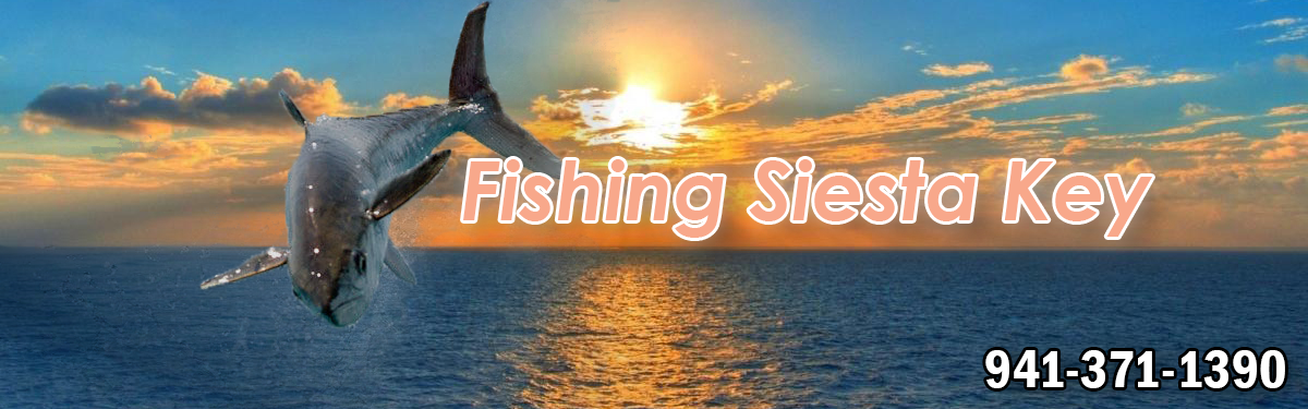 Fishing Siesta Key, Siesta Key Fishing Charters