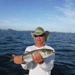 Bluefish please Siesta Key fishing charter clients!