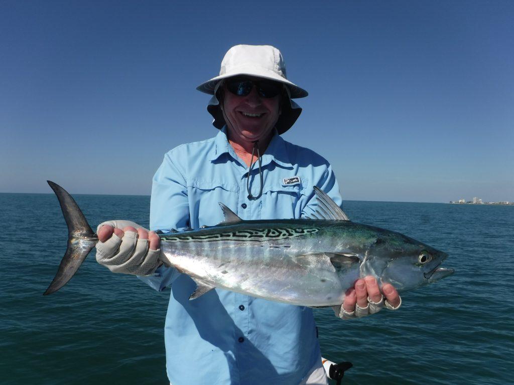 False albacore fishing in Sarasota