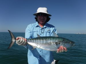 False albacore fishing in Sarasota