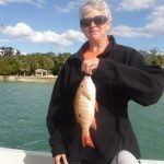 Bottom fishing produces on Siesta Key fishing charters