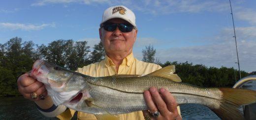 Siesta Key fishing charters