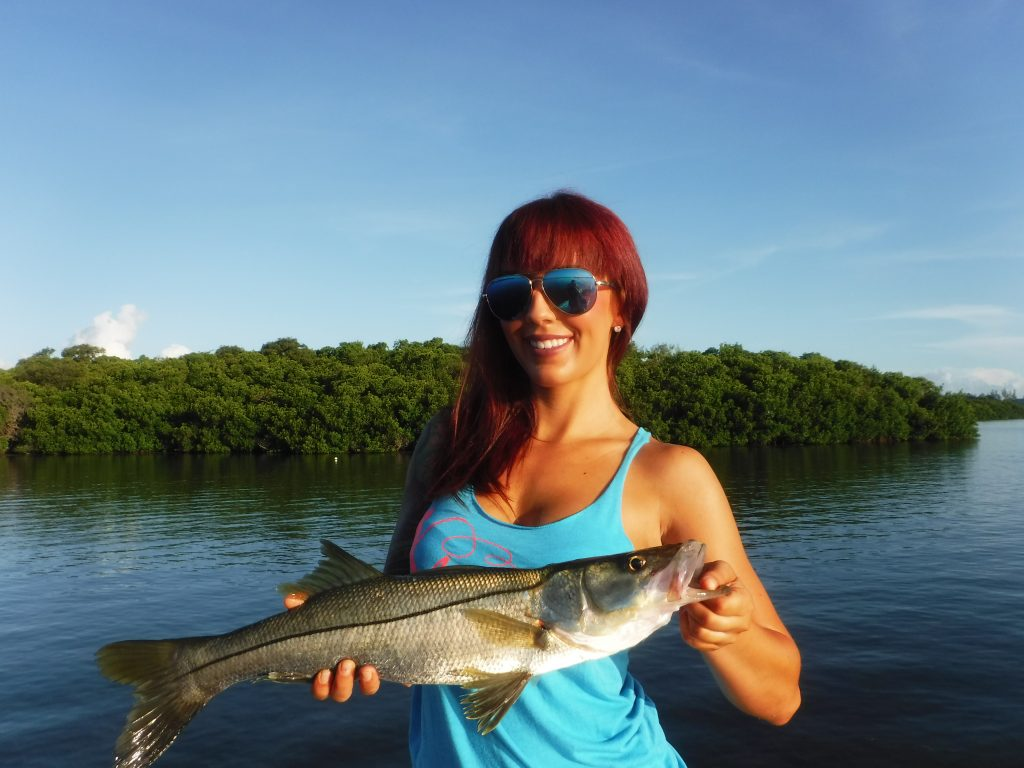 Siesta key fishing tackle fishing siesta key sarasota for Sarasota fishing charters
