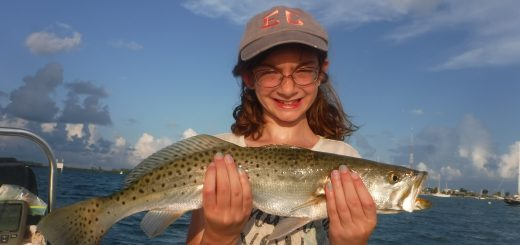 speckled trout fishing in Sarasota