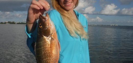 snapper fishing Siesta Key flats