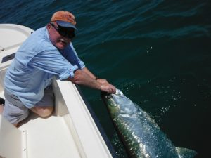 tarpon fishing in Sarasota