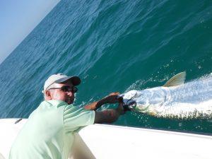 tarpon fishing in Sarasota