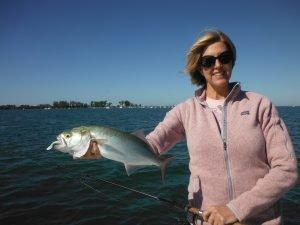 Siesta Key bluefish fishing