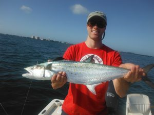 Siesta Key fall fishing