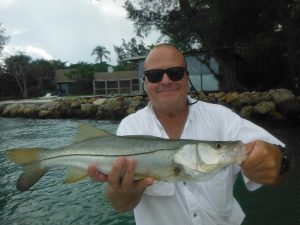 Sarasota snook fishing charters