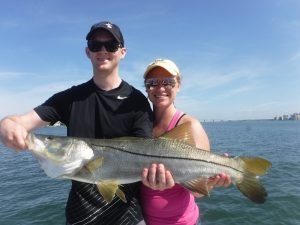 top 19 Siesta Key Game Fish