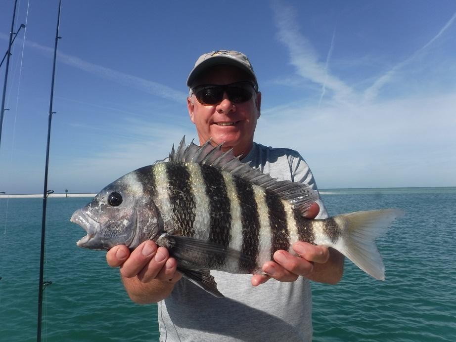 Sarasota Florida fishing charters