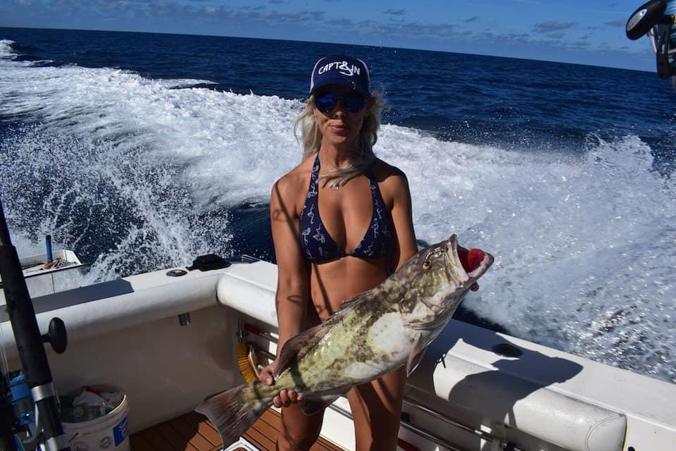 grouper fishing Siesta Key